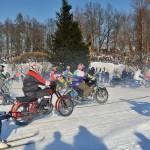 Skijorings_Cesis (54 of 96)_mini
